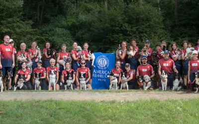 AKC 2020 European Open Team USA Tryouts