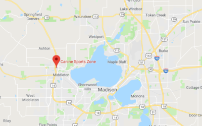 Canine Sports Zone – Middleton, WI